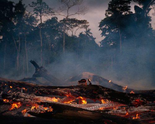 Lángoló erdő